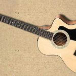 Taylor 114ce Front 100 series - 005